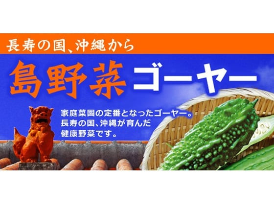 島野菜 ゴーヤー